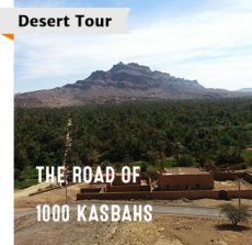 Morocco Desert Tour of the Road of 1000 Kasbahs